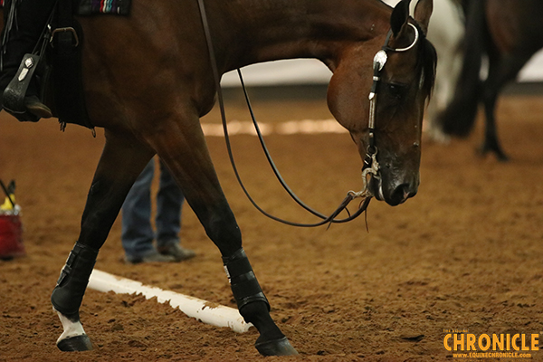 If the Boot Fits- Can Leg Wraps or Boots Prevent Tendon Injury?