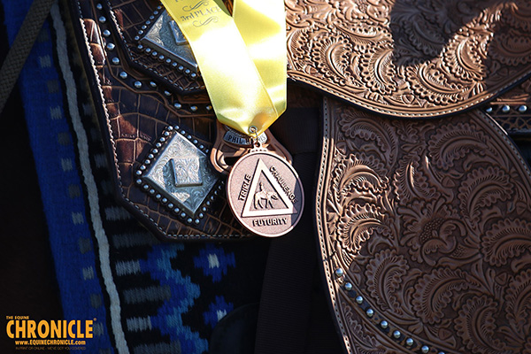 What Type of Horse Show Awards Do You Prefer?