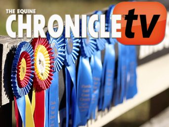EC TV- Sunshine and Palm Trees- Showing at the FL Gold and Gulf Coast