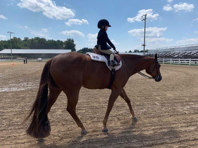 EC Photo of the Day- Teeny, Tiny Equitation Rider