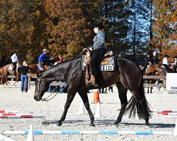 Exhibitors From Across Country Travel to Compete at Record-Breaking FL Gold Coast