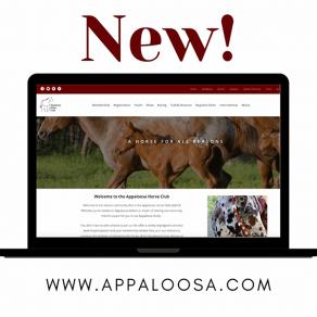 ApHC Unveils New Website Platform