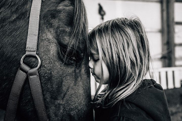 EC Photo of the Day- Every Horse Deserves Love