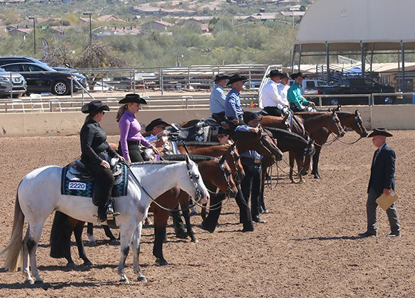 Important Info About Sun Circuit Exhibitor Entry Points and COVID Protocol