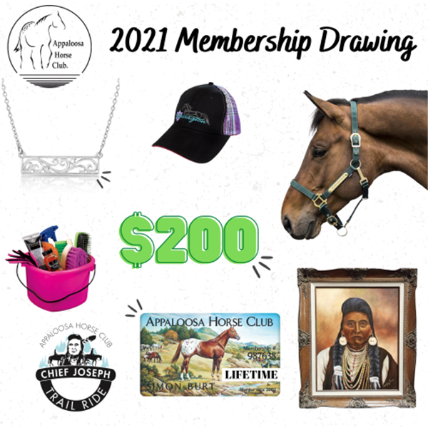 2021 ApHC Membership Drawing Winners