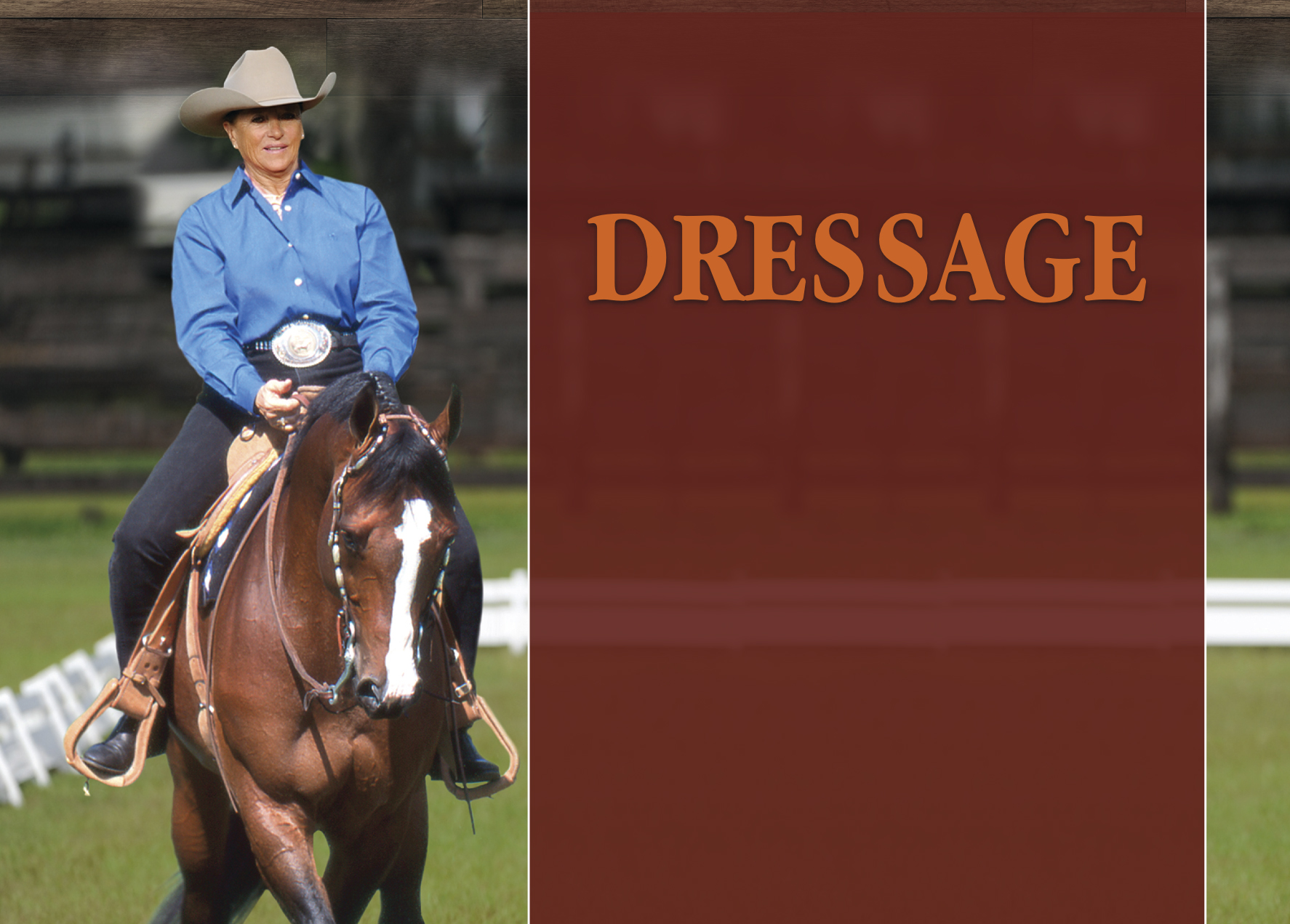 20 Years in the Making – Dressage Comes to the Forefront in AQHA