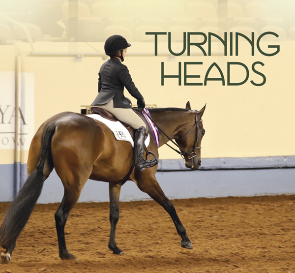 Turning Heads – Perfecting the Headset in the Hunter Under Saddle Horse