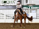 Around the Rings- EOQHA Show