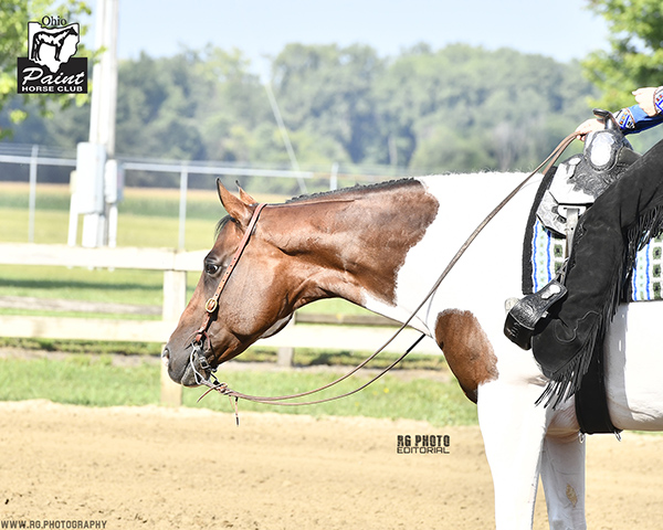 Results and Photos- Ohio PHC Buckeye Bonanza