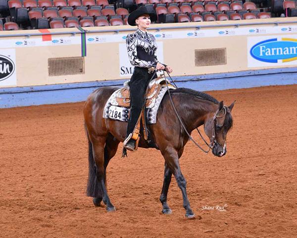 Watch AQHA Competitive Edge Videos on Horsemanship, Equitation, and Showmanship