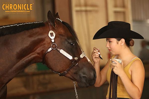 What's Your Favorite Snack to Share With Your Horse?