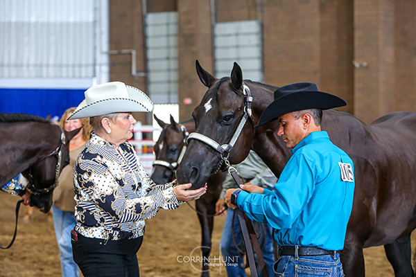 Results and Around the Ring Photos- The American Royal