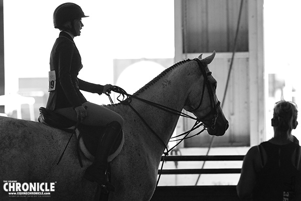 EC Photo of the Day- A Horse Master