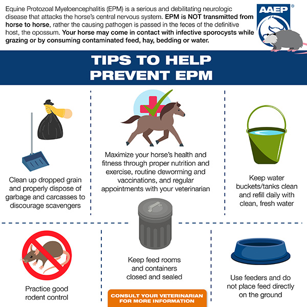 Tips to Help Prevent EPM