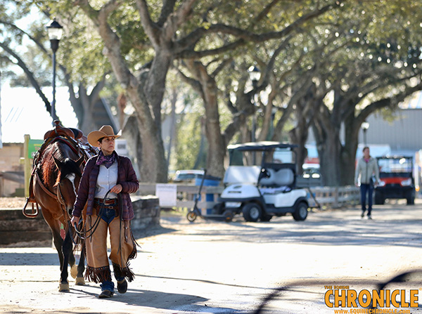 EC Photo of the Day- The Art of Horsemanship