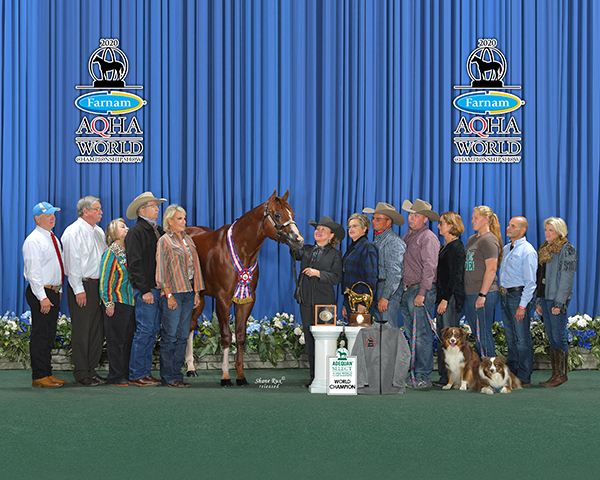 BHF Announces New Stakeholders, Joy and Jeff Stehney, and New Amateur Stallion Slot For Raylan Givens