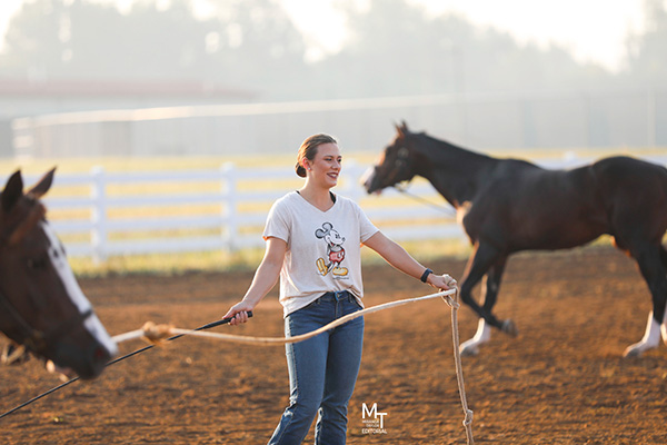 EC Photo of the Day- Horse Show or Disney World?