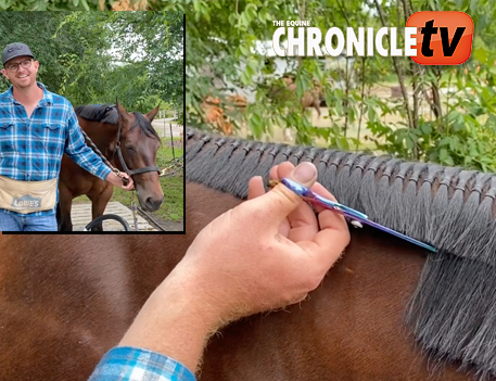 EC TV- How to Band a Horse's Mane