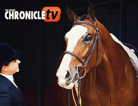 EC TV- How to Braid a Mane For Hunt Seat