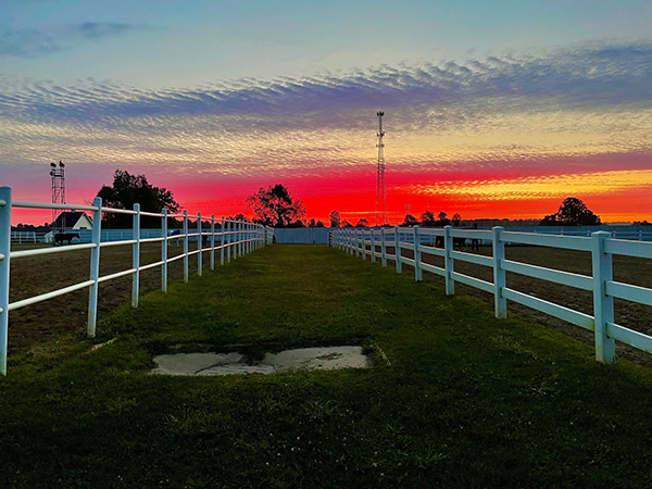 EC Photo of the Day- Horse Show Sunset