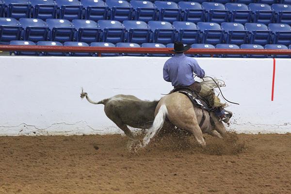 AQHA Ranching Heritage Challenge- Oct. 16th