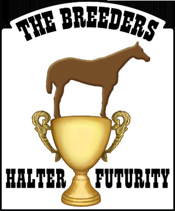 BHF Extends Special Invitation Through Leasing Program, Announces New Amateur Stallions