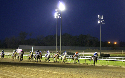 CA Governor Calls for Santa Anita Park to Close for Investigation Following Horse Deaths