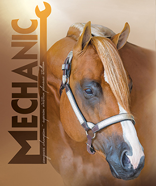 Cover Story – Mechanic