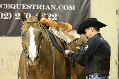 Stress Reduction Tips For Professional Horsemen