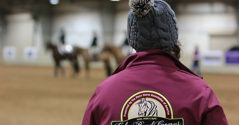 Special Event Intern Opportunity For 2019 Pinto World Show