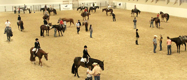 AQHA West Level 1 Championship Rescheduled!