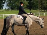 More Around the Ring Photos- IQHA State Show