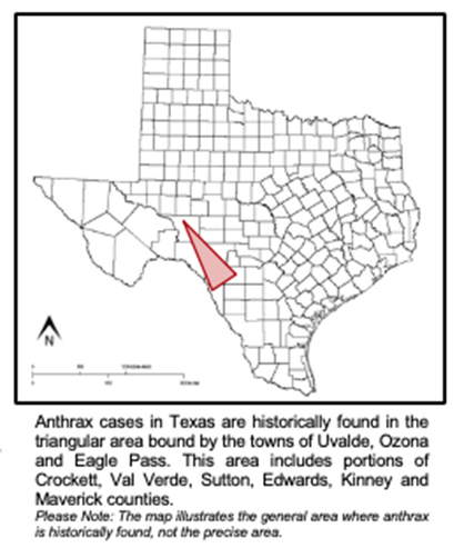 Texas Horse and Other Animals Confirmed to Have Anthrax in Texas