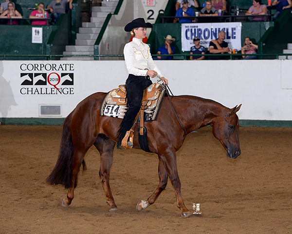 Carey Nowacek and Lethals Hot Weapon Win Equine Chronicle Bridleless Horsemanship at Corporate Challenge