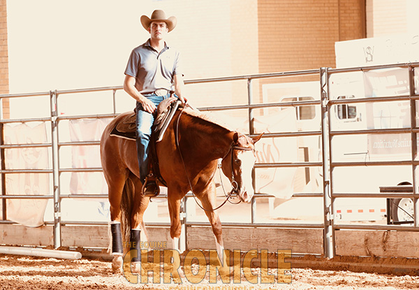 EC TV- 2019 APHA World- Relive the Memories