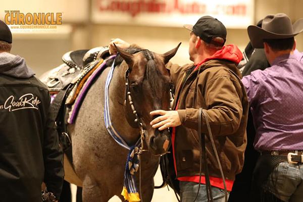2019 QH Congress- Maturity $10K Ltd. Horse WP