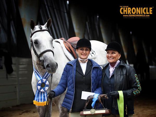 2019 QH Congress- Senior Hunter Under Saddle