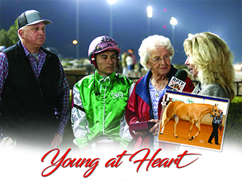 Young at Heart – If horses are the secret to staying young, Elizabeth Logan has discovered the key.