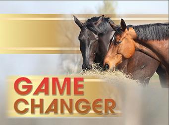 Game Changer – Researcher Employs Drug-Free  Estrus Suppression For Mares