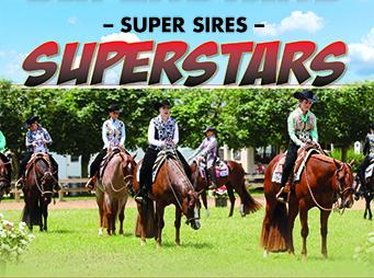 Super Sires Superstars – A Recap of WPSS Western Pleasure Futurity at 2019 Tom Powers Futurity