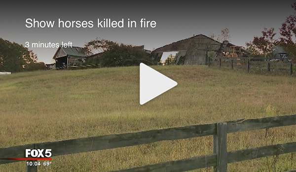 $50,000+ Raised For Carney Performance Horses Following Devastating Fire; Auction Scheduled