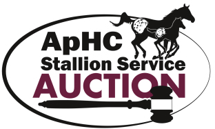 SSA Two-Year-Old Incentive Classes at 2020 WorldChampionship Appaloosa Show