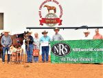 WCHA Versatility Ranch Horse 2-Year-Old Prospect Results
