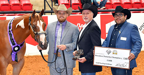 Changes to APHA Breeders' Trust Make it Easier to Compete For $100,000+