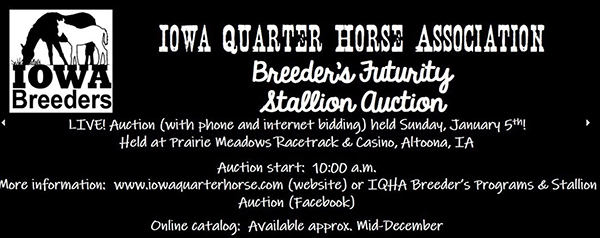 Catalog Now Available For IQHA Breeders' Futurity Auction