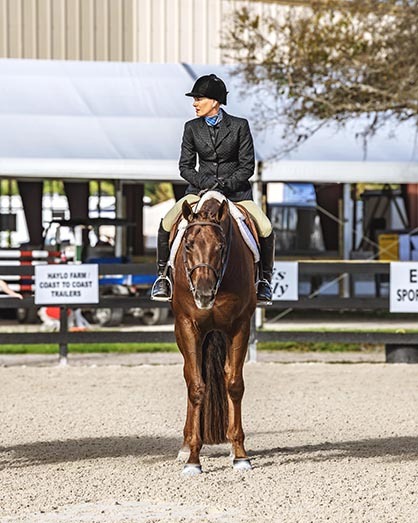 Final Results and High Point For Fox Lea Farm/NSBA FITS