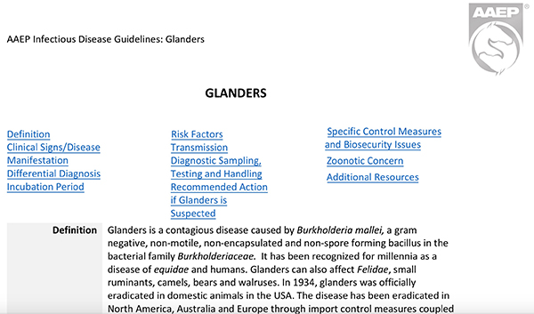 """AAEP Publishes Guidelines for """"Glanders""""- Contagious Disease Recently Resurfacing"""
