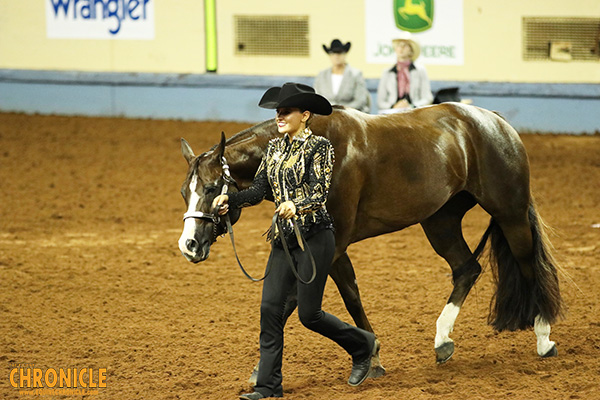 How Will Coronavirus Affect the Horse Industry this Summer? Statements from AQHA, APHA, NSBA Regarding Events