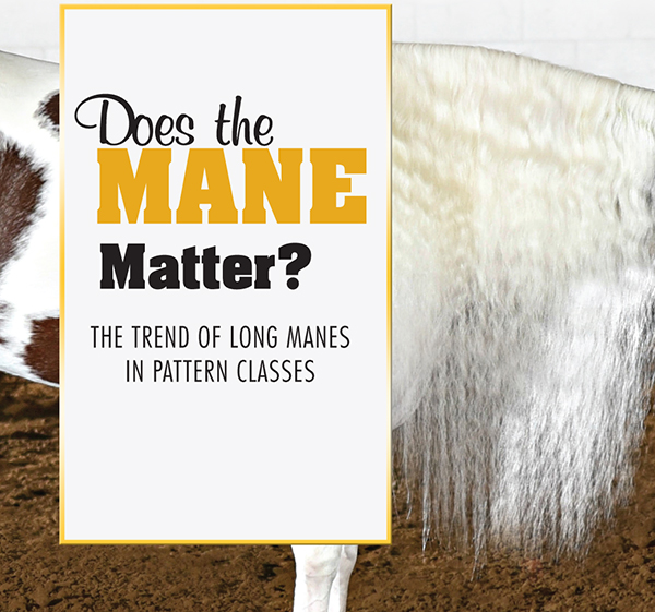 Does the Mane Matter? – The Trend of Long Manes in Pattern Classes