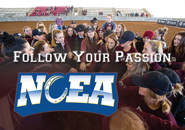 NCEA – Follow Your Passion